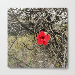 Being Alive - Red Hibiscus Flower Metal Print