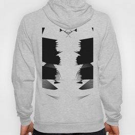 Altered and degraded Hoody