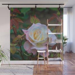 A rose Wall Mural