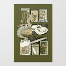 Shelf Life Canvas Print