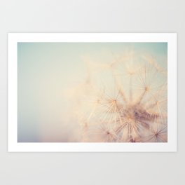 dandelion dreams .... Art Print