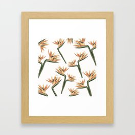 Birds of Paradise Flowers 2 Framed Art Print