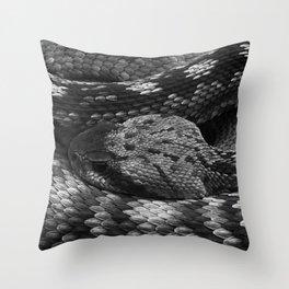 Diamondback Rattlesnake Throw Pillow
