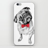 percy jackson iPhone & iPod Skins featuring Percy Pug by 13 Styx