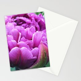 Purple Parrot Tulip Stationery Cards