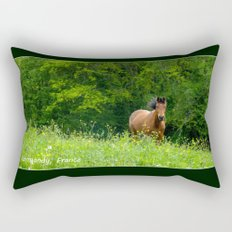 Horse in a pature Rectangular Pillow