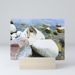 Driftwood on Rocks Mini Art Print
