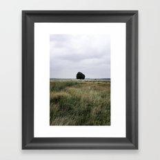 De Hoge Veluwe II Framed Art Print