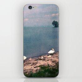 SWANS AT THE LAKE iPhone Skin