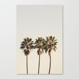 Golden Palms Canvas Print