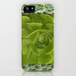 COLLAGE GRAY-GREEN  SUCCULENTS  MODERN DESIGN iPhone Case