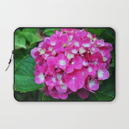 Pink Hydrangea With White Center Laptop Sleeve