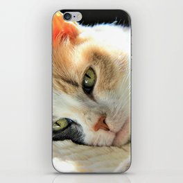 Kitty Light by Reay of Light iPhone Skin
