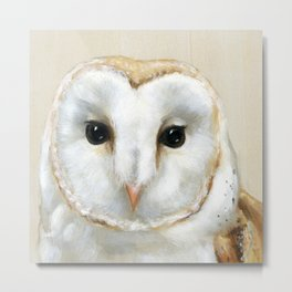 Barn Owl // Look At Me Metal Print