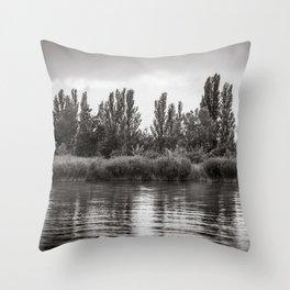 melancholic peace Throw Pillow