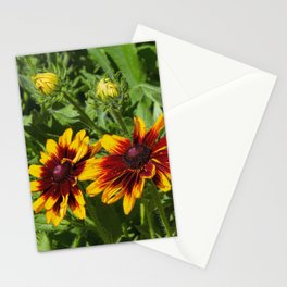Denver Daisy Stationery Cards