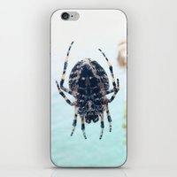 spider iPhone & iPod Skins featuring Spider by Bor Cvetko