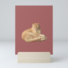 Sleepy ginger cat Mini Art Print