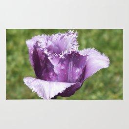 Purple Fringed Tulip Rug