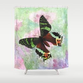Urania Ripheus Butterfly Shower Curtain