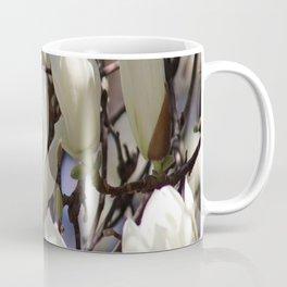 Magnolia in blossom Coffee Mug