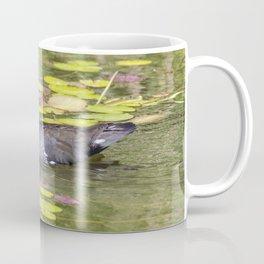 Moorhen Coffee Mug