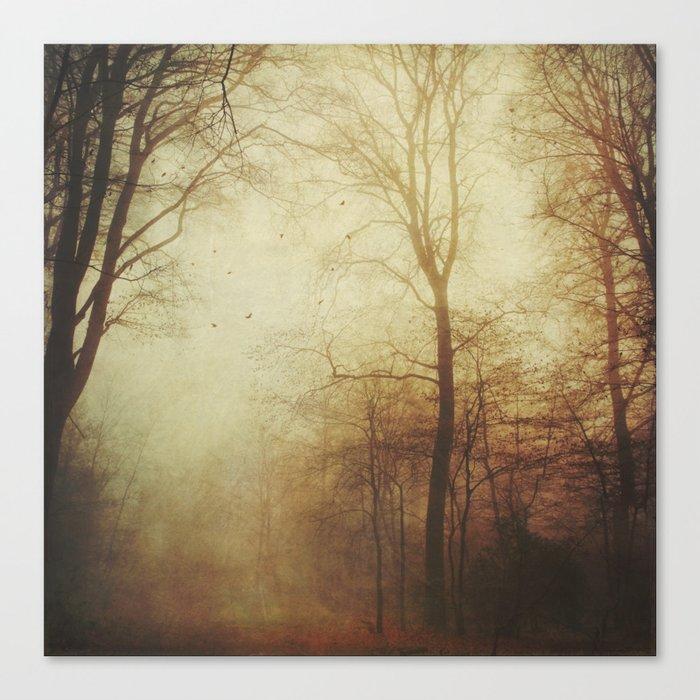 Fall Tales Canvas Print
