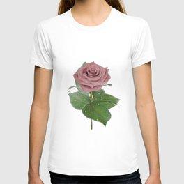 Single Standing Rose (Light Pink) T-shirt