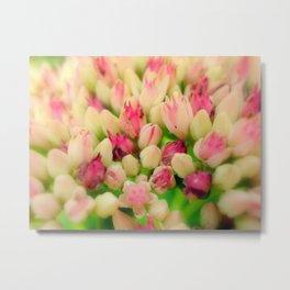 Bunch of flowers2 Metal Print