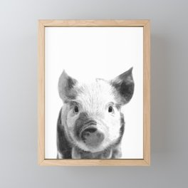Black and white pig portrait Framed Mini Art Print