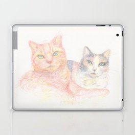 Duncan and Coleco Laptop & iPad Skin