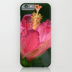 Pink Hibiscus Slim Case iPhone 6s