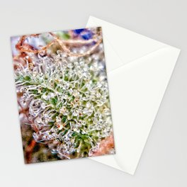 Skywalker OG Kush Strain Frosty Buds Calyxes Trichomes Close Up View Stationery Cards