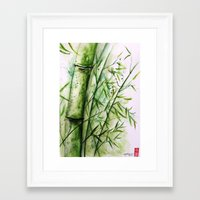bamboo Framed Art Prints featuring Bamboo by rchaem