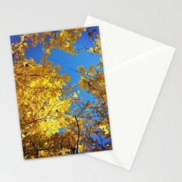 not all that glitters is gold. Stationery Cards