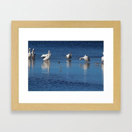 Can't Reach the Itch Framed Art Print