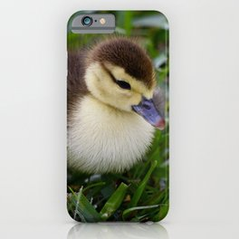 Daisy's Duckling iPhone Case