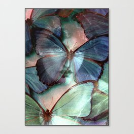 You are my blue butterfly Canvas Print