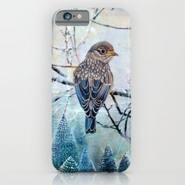 Winter Glow iPhone Case