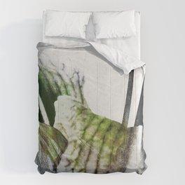 Daylily01_b Comforters