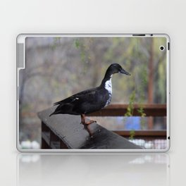 Modelling Duck Laptop & iPad Skin
