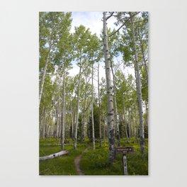 Sunday's Trail #1 Canvas Print