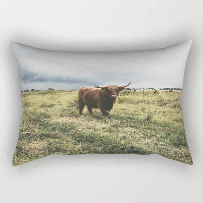 Landscape Bull Rectangular Pillow