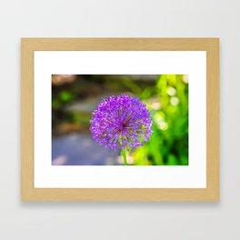 Purple + Blue Flower Framed Art Print