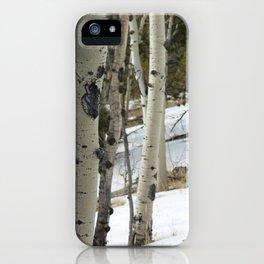 Aspen 1# iPhone Case