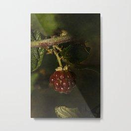 Wild berries #2 Metal Print