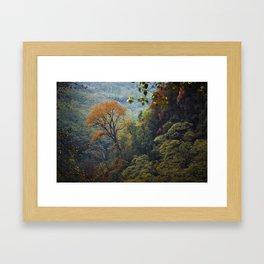 Asia 38 Framed Art Print