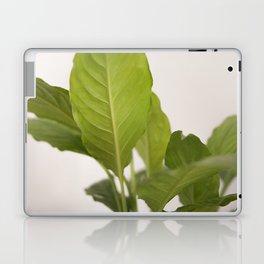 Hojas verdes (2) (green leafs) Laptop & iPad Skin
