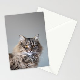 Royal Tom cat : Look into my eyes Stationery Cards