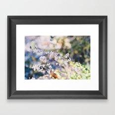 Botanical no. 1 Framed Art Print